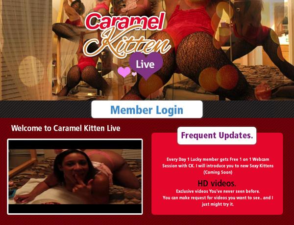 Caramel Kitten Live Trial Discount