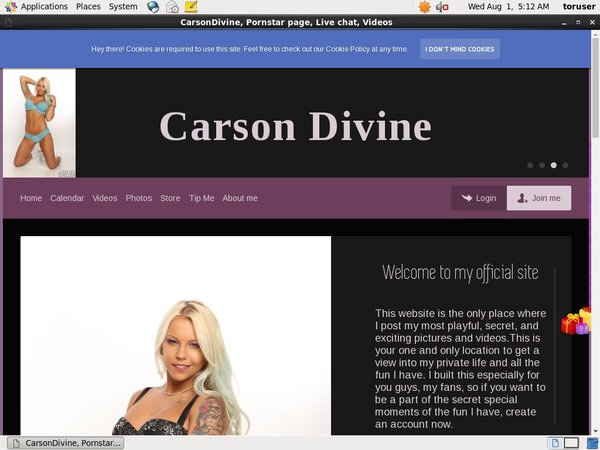 How To Get Into Carson Divine