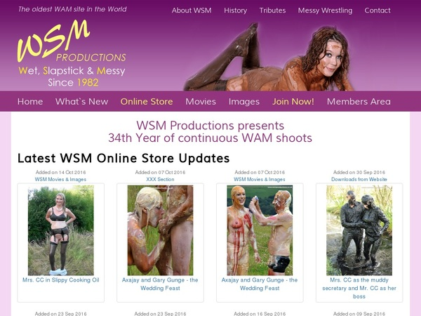 WSM Productions You